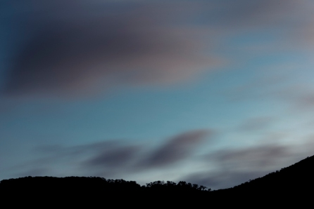 © L.A. Cuellar, All Rights Reserved.